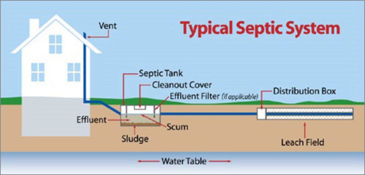 Diagram of typical septic system 1170x563 - Standard Blog with left sidebar